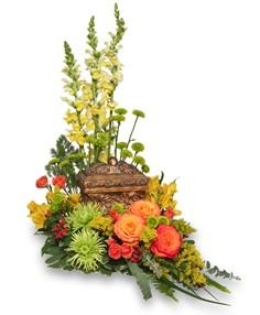 Cremation Arrangements