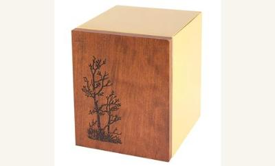 SHEET BRONZE  Wood / Cherry Tree NEW
